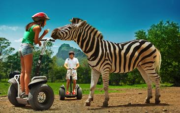 Segway safari at casela world of adventures