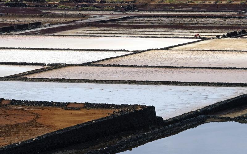 Tamarin Mauritius salt-pans