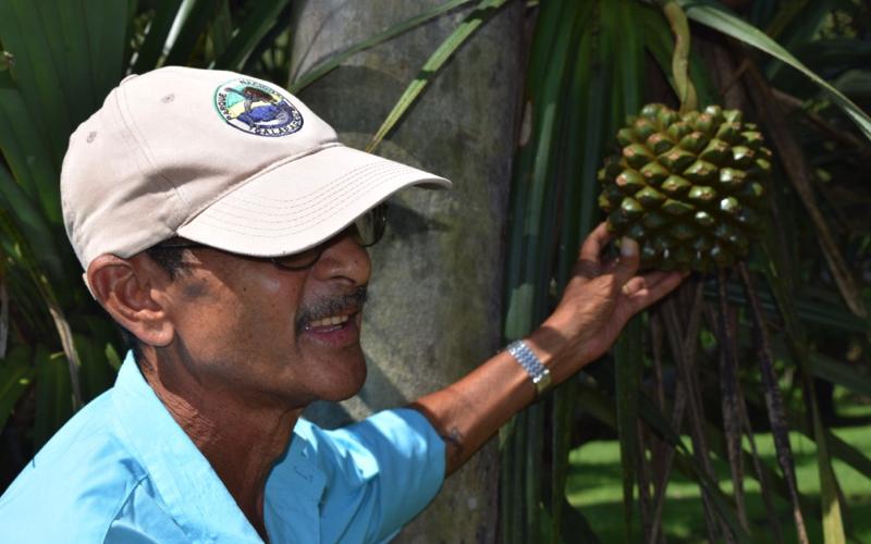 Guide at Botanical Gardens Mauritius